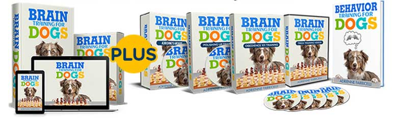 The Tops Benefits of Brain Training for Dogs Adrienne Farricelli's Online Dog Trainer - Brain Training For Dogs