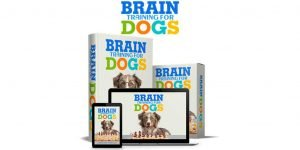 Brain Training For Dogs Review – A Detailed Analysis By A Certified Dog Trainer!