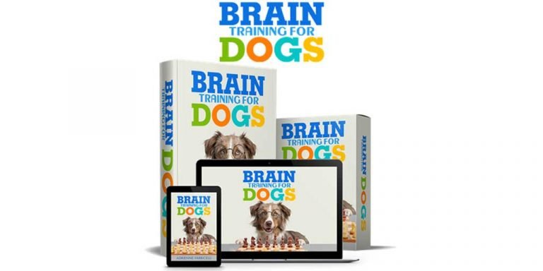 Adrienne Farricelli's Brain Training for Dogs: Fun and Educational Games for Dogs