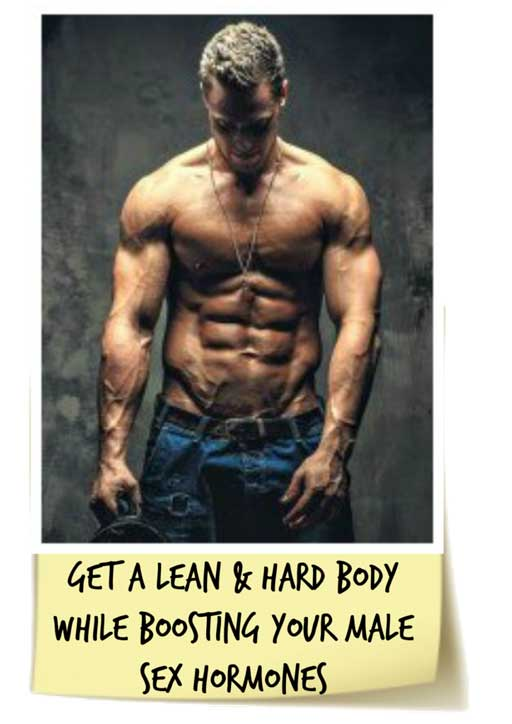 How Does Anabolic Running Work? Anabolic Running: How To Run Without Destroying Your Testosterone free download pdf
