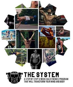 Bar Brothers The System Review. My Results After 3 Months., All Best Reviews