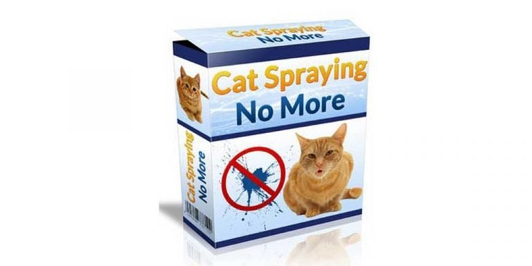 Cat Spraying No More An In-Depth Review – My Cat Training