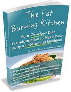 The Fat Burning Kitchen, Mike Geary Fat Burning Kitchen Review - Does It Really Work?, ABest Reviews