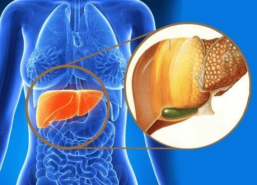 What You Will Learn from the Fatty Liver Remedy